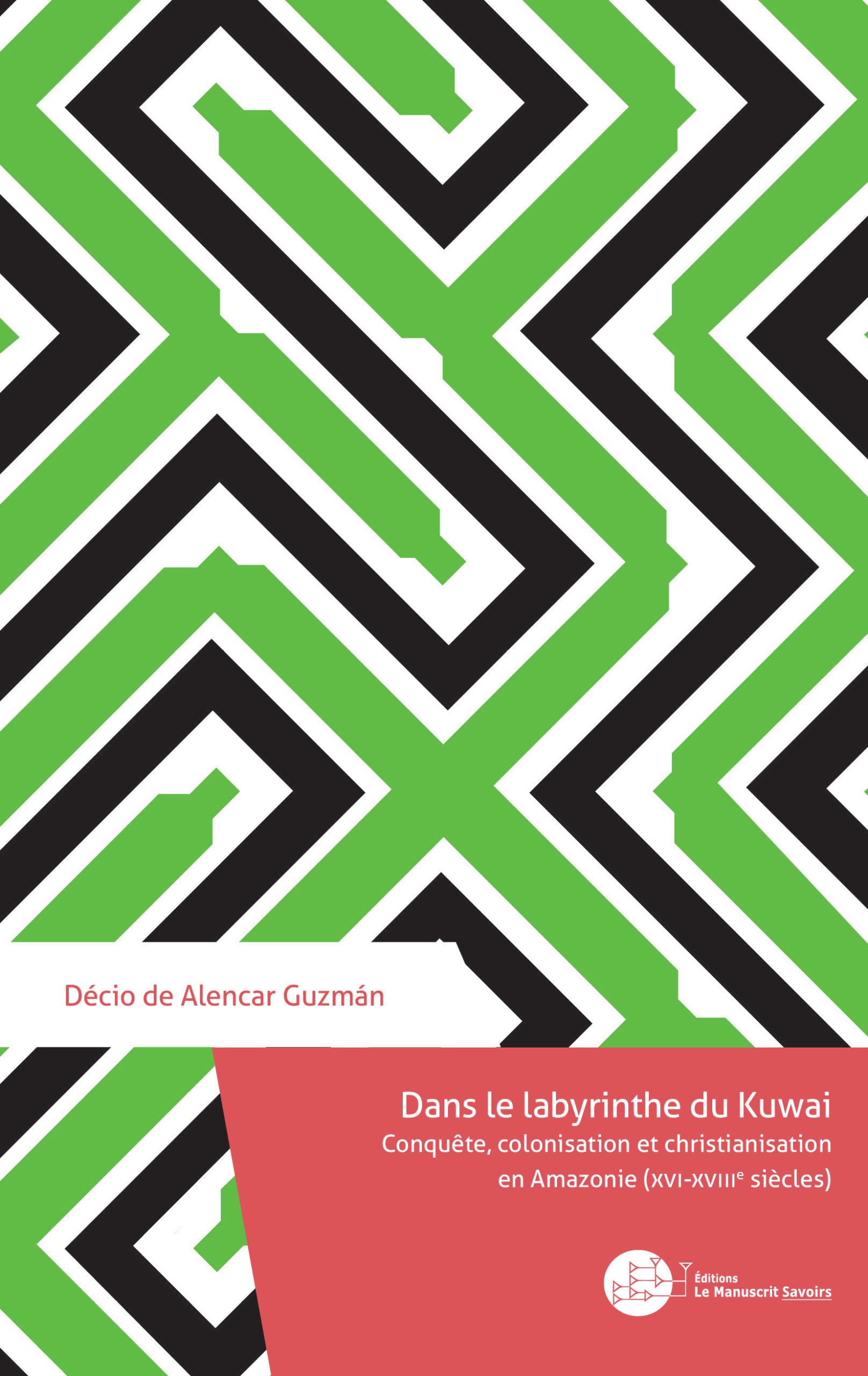 couverture Dans le labyrinthe du Kuwai